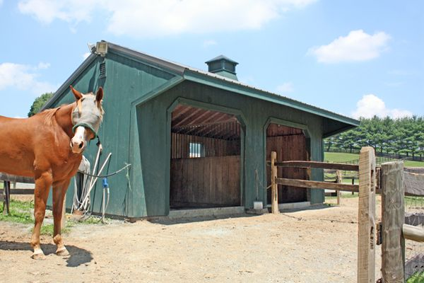 12x24 Horse Barn Run-in Shed with 4' Overhang, Two Openings